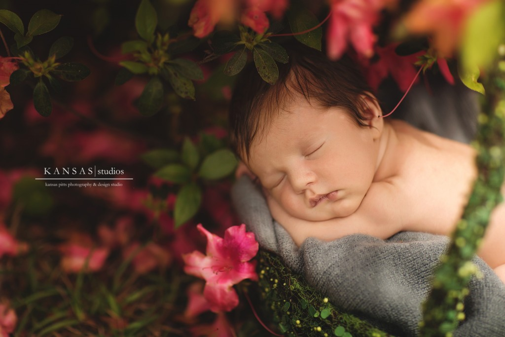 azaleas and newborns