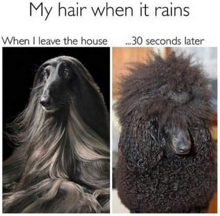 Hair_and_Humidity