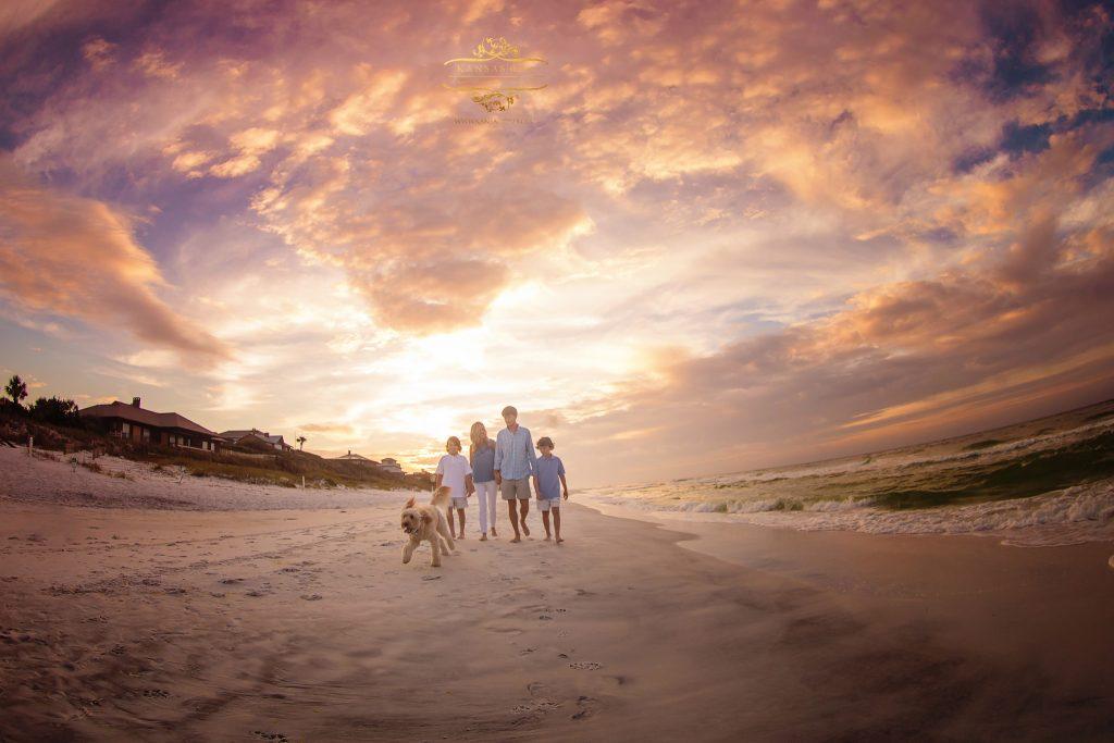 south walton dogs on the beach