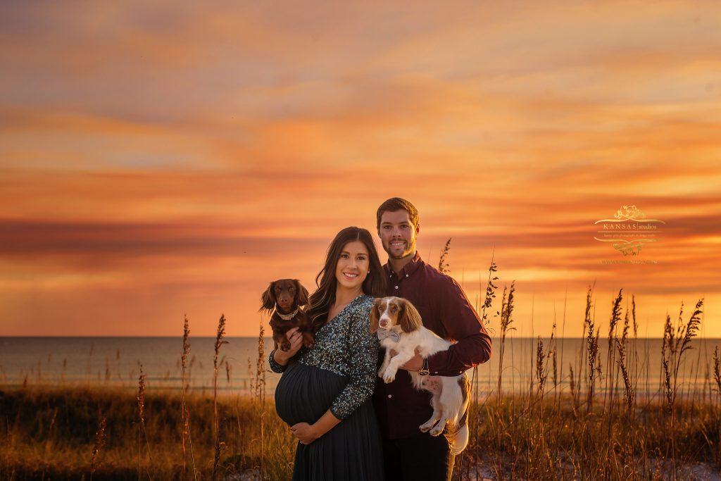 beach maternity picture with dogs